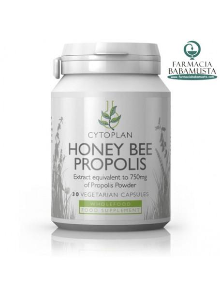 HONEY BEE PROPOLIS x 30 VEGAN CAPSULES - CYTOPLAN