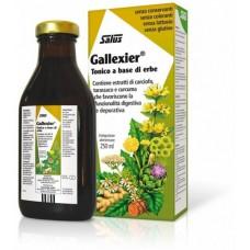 Gallexier® Shurup Bimor Për Mirëqenien e Mëlcisë, Stomakut, Tëmthit 250 mL - SALUS HAUS